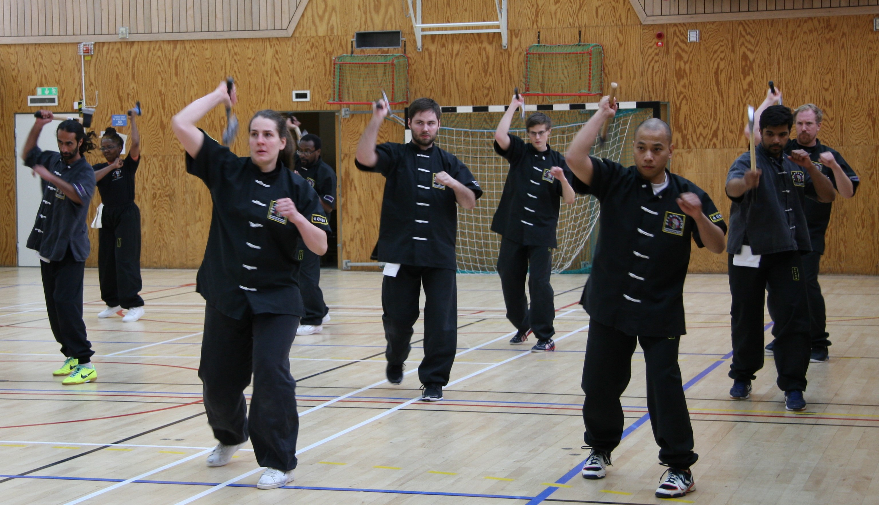 Louis Linn O Shin Chuen Union axe close combat techniques week-end course held in Stockholm on April 22, 2017, lead by the chief instructor Louis Linn.